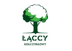 Podłogi drewniane warstwowe, lite, parkiety z dębu oraz jesionu, Kraków